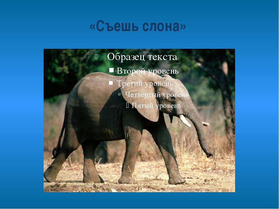 «Съешь слона»