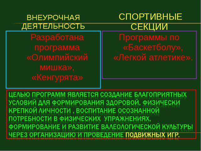 ВНЕУРОЧНАЯ ДЕЯТЕЛЬНОСТЬ СПОРТИВНЫЕ СЕКЦИИ Разработана программа «Олимпийский...