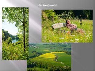 der Westerwald