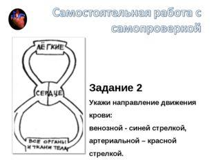 Задание 2 Укажи направление движения крови: венозной - синей стрелкой, артери