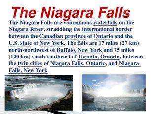 The Niagara Falls The Niagara Falls are voluminous waterfalls on the Niagara