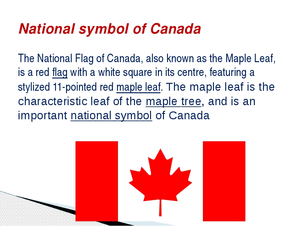 The National Flag of Canada, also known as the Maple Leaf, is a red flag with...