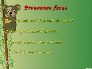 Pronounce focus [æ] – animal, camel, fact, attraction, capital [ai] – tiger,