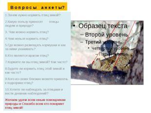 В о п р о с ы а н к е т ы? 1.Зачем нужно кормить птиц зимой? 2.Какую пользу п