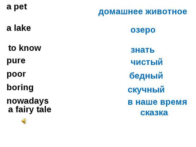 а pet а lake домашнее животное озеро to know знать pure чистый poor бедный bo...