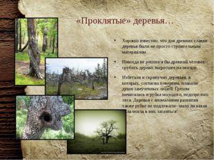 «Проклятые» деревья… Хорошо известно, что для древних славян деревья были не