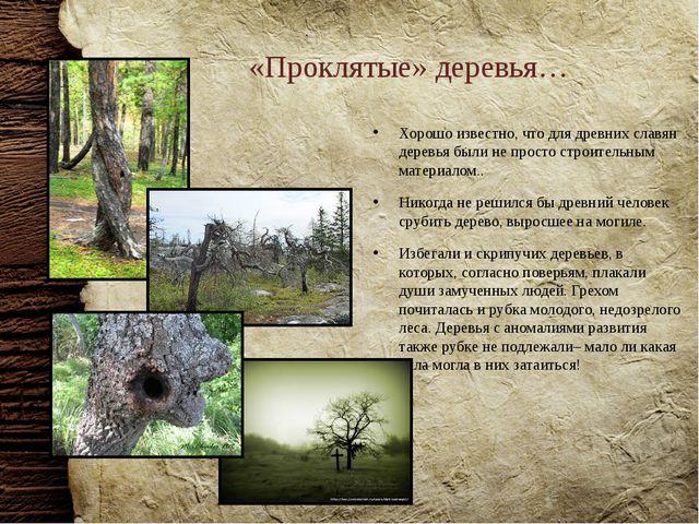 «Проклятые» деревья… Хорошо известно, что для древних славян деревья были не...