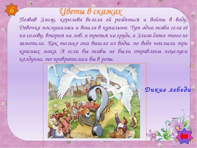 6 Цветы в сказках Позвав Элизу, королева велела ей раздеться и войти в воду....