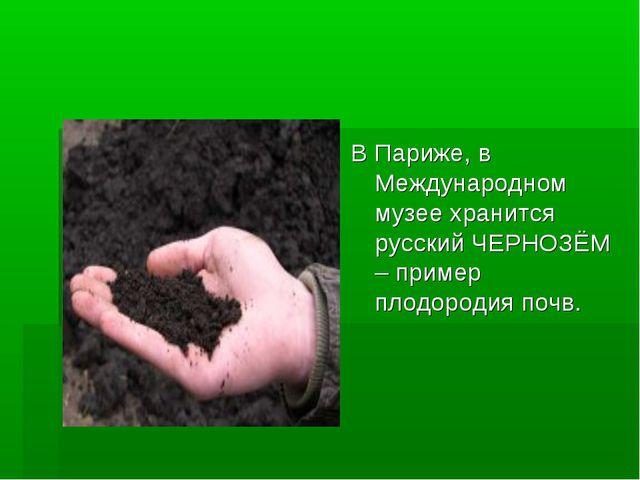 В Париже, в Международном музее хранится русский ЧЕРНОЗЁМ – пример плодородия...