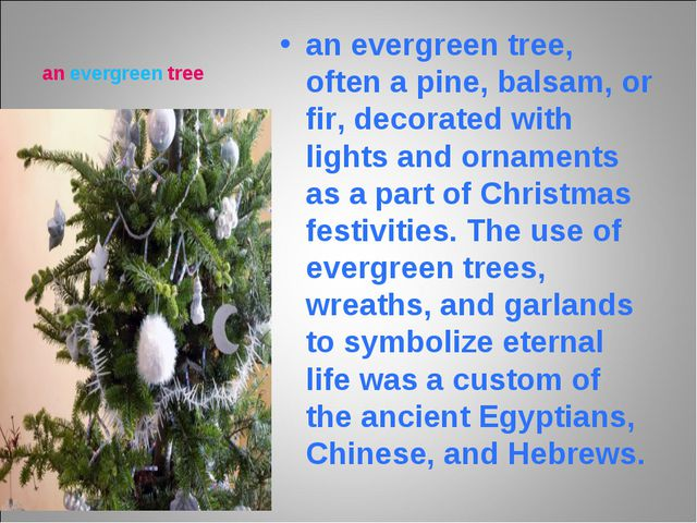 an evergreen tree an evergreen tree, often a pine, balsam, or fir, decorated...