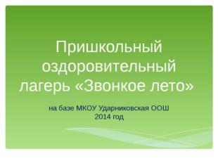 Пришкольный оздоровительный лагерь «Звонкое лето» на базе МКОУ Ударниковская