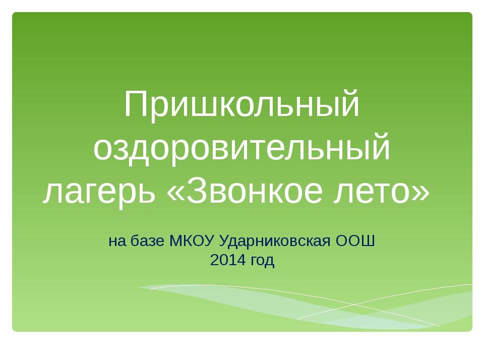 Пришкольный оздоровительный лагерь «Звонкое лето» на базе МКОУ Ударниковская...