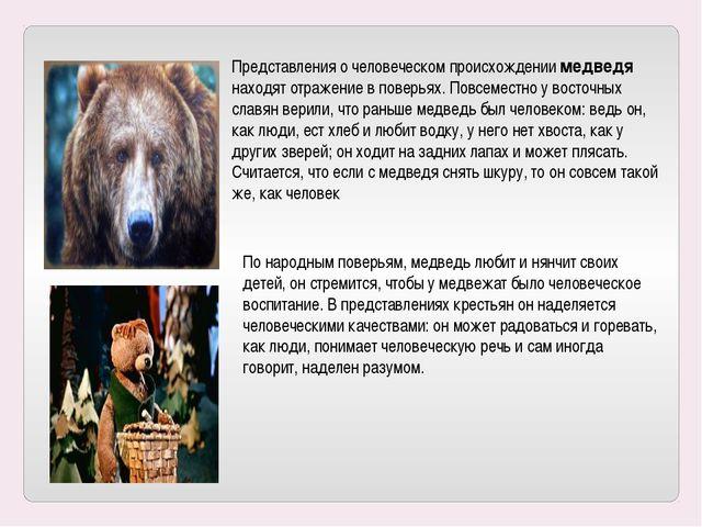 Представления о человеческом происхождении медведя находят отражение в поверь...