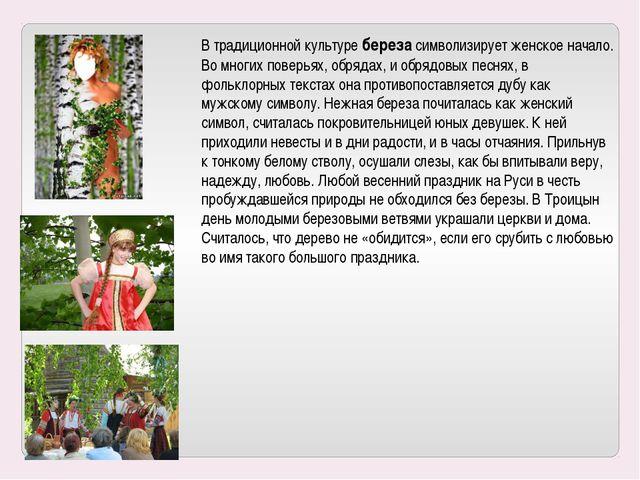 В традиционной культуре береза символизирует женское начало. Во многих поверь...
