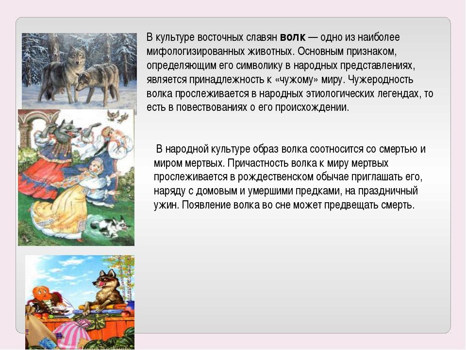 В культуре восточных славян волк — одно из наиболее мифологизированных животн...