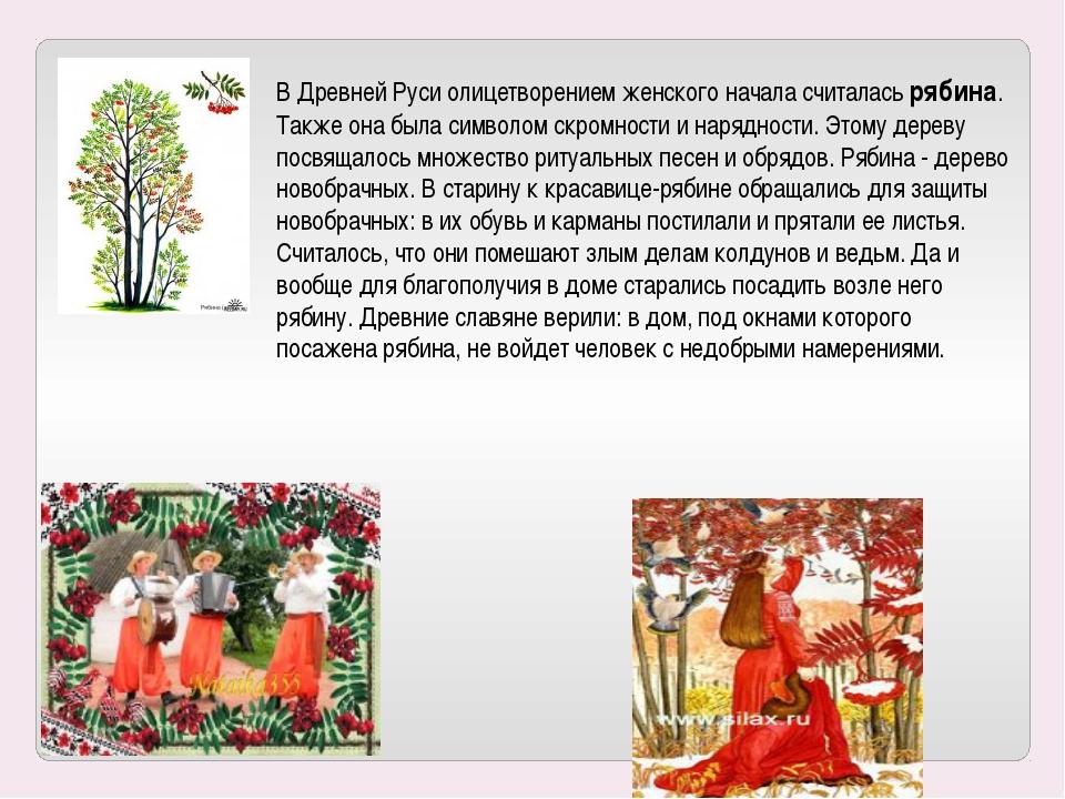 В Древней Руси олицетворением женского начала считалась рябина. Также она был...