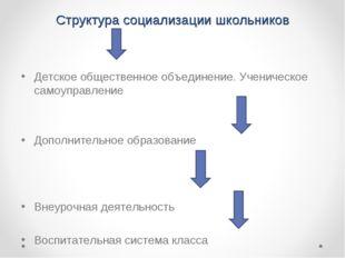 Структура социализации школьников Детское общественное объединение. Ученическ