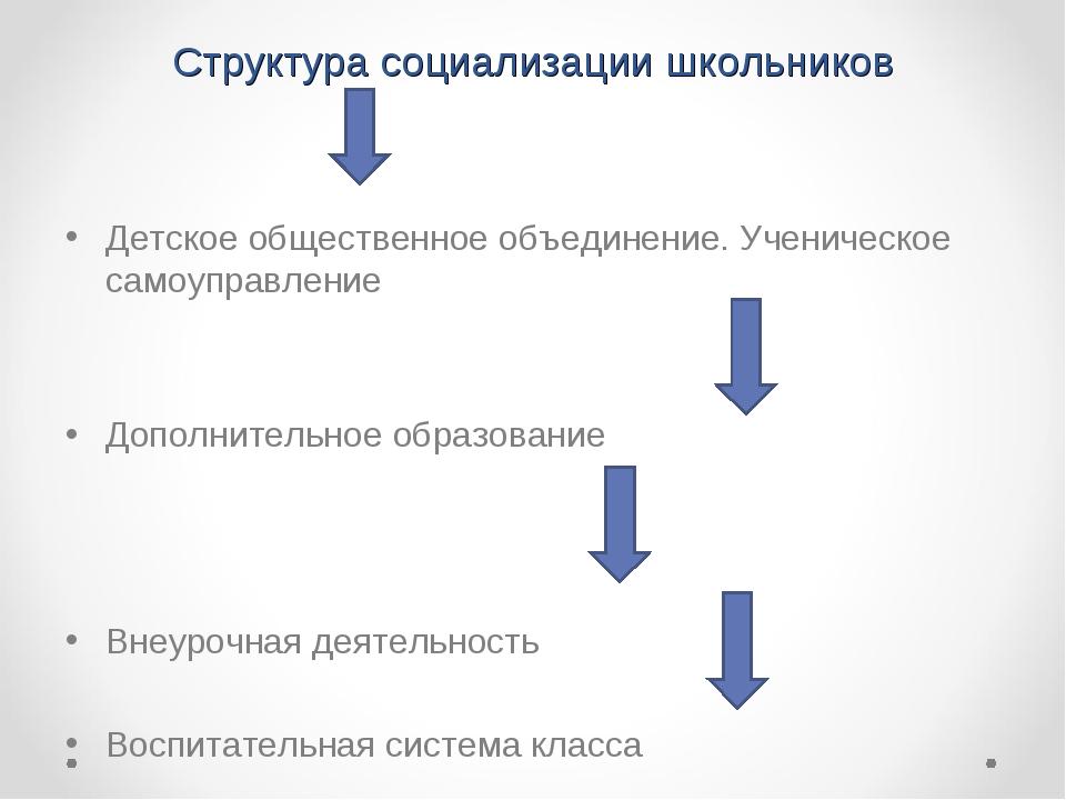 Структура социализации школьников Детское общественное объединение. Ученическ...