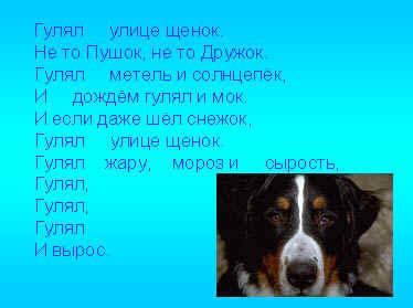 http://festival.1september.ru/articles/505702/img1.jpg