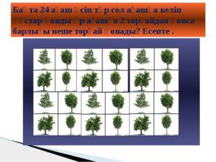 Бақта 24 ағаш өсіп тұр сол ағашқа келіп құстар қонды әр ағашқа 2 торғайдан қ