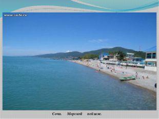 Сочи. Морской пейзаж. Современный Сочи – это около 300 санаториев, пансионато
