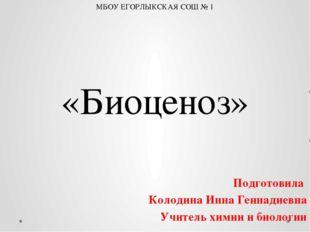 «Биоценоз» Подготовила Колодина Инна Геннадиевна Учитель химии и биологии МБО