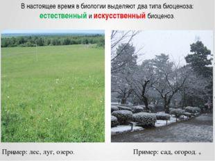 В настоящее время в биологии выделяют два типа биоценоза: естественный и иску