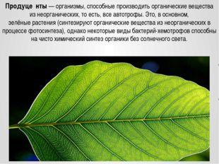 Продуце́нты— организмы, способные производить органические вещества из неорг