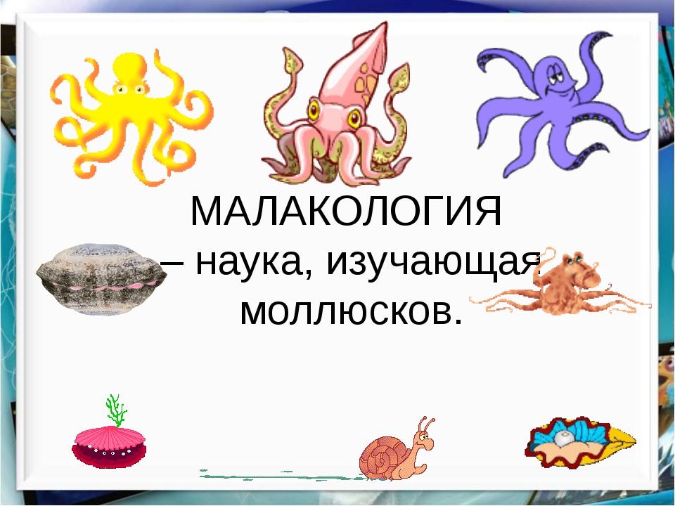 МАЛАКОЛОГИЯ – наука, изучающая моллюсков.