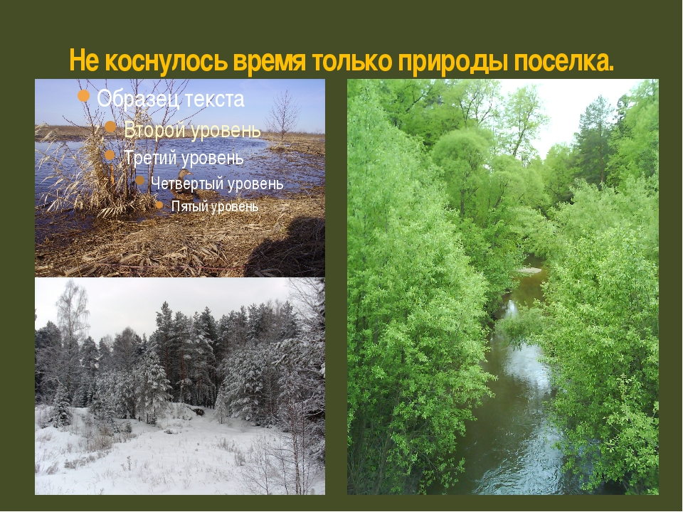 Не коснулось время только природы поселка.