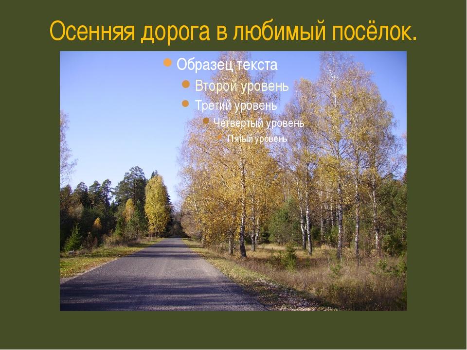 Осенняя дорога в любимый посёлок.