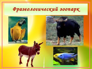 Фразеологический зоопарк