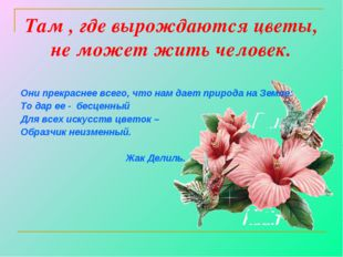 Там , где вырождаются цветы, не может жить человек. Они прекраснее всего, что