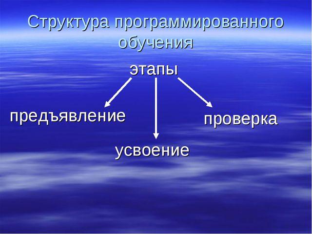 Структура программированного обучения проверка этапы предъявление усвоение