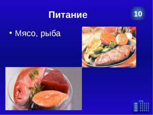 Питание Почему на обед в качестве первого блюда рекомендуется есть суп? Для п