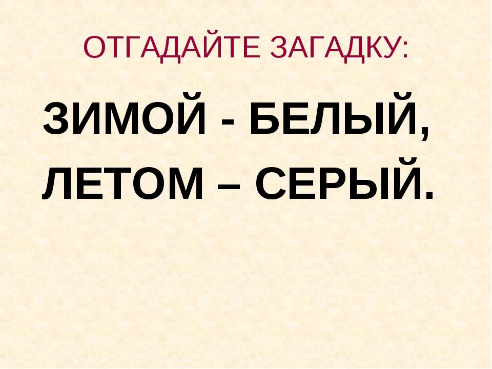 ОТГАДАЙТЕ ЗАГАДКУ: ЗИМОЙ - БЕЛЫЙ, ЛЕТОМ – СЕРЫЙ.