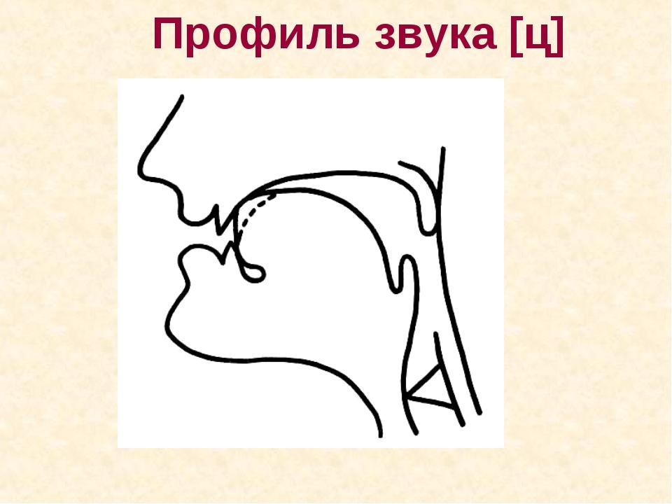 Профиль звука [ц]