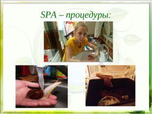 SPA – процедуры: