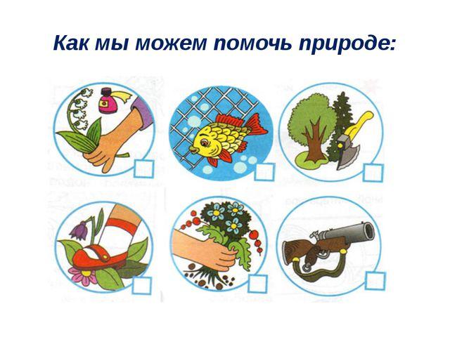 Как мы можем помочь природе: