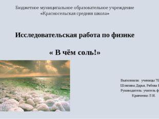 Бюджетное муниципальное образовательное учреждение «Красносельская средняя шк