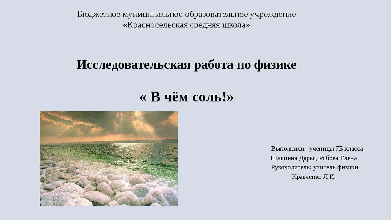 Бюджетное муниципальное образовательное учреждение «Красносельская средняя шк...