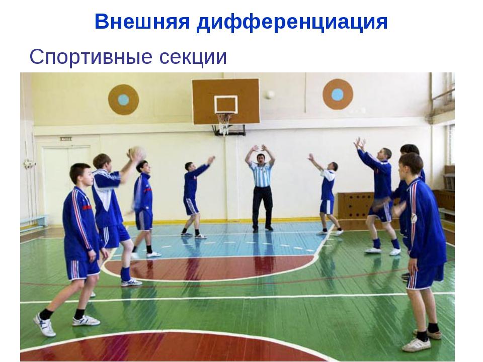 Внешняя дифференциация Спортивные секции