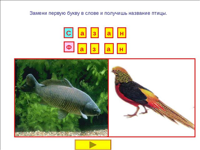 И Б Замени первую букву в слове и получишь название птицы. Г Р У Н К А В Д Е...