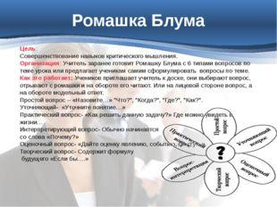 ДАЛЕЕ Цель: Совершенствование навыков критического мышления Организация: Стан