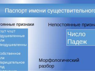 Паспорт имени существительного Морфологический разбор Постоянные признаки Не
