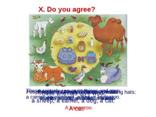 X. Do you agree? These animals give wool: a sheep, a camel, a dog, a cat. A c