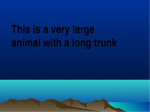 This is a very large animal with a long trunk