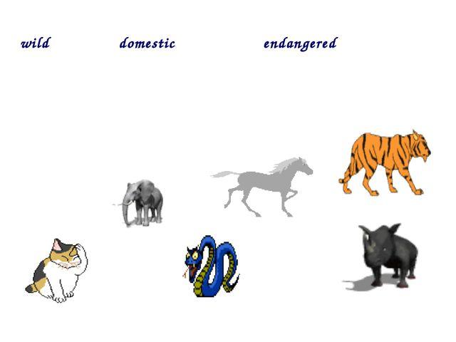 wild domestic endangered