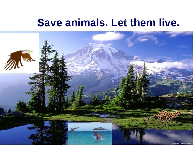 Save animals. Let them live.