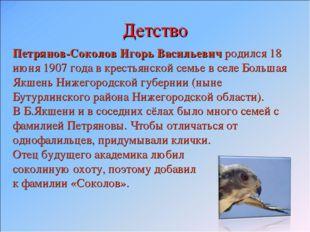 Детство Петрянов-Соколов Игорь Васильевич родился 18 июня 1907 года в крестья
